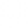 Big Brother Symbol Icon