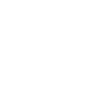 Identity and the Immigrant Experience Theme Icon