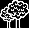 Elm Trees Symbol Icon
