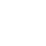 Identity Theme Icon