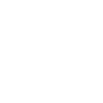 The Tiger Symbol Icon