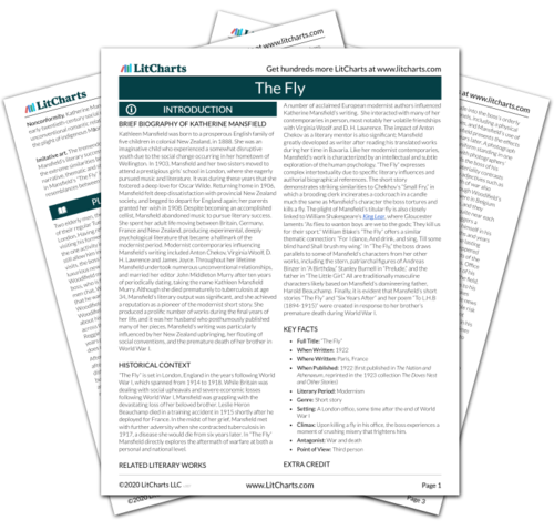 The printed PDF version of the LitChart on The Fly