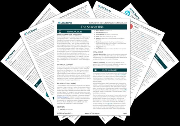 The Scarlet Ibis PDF
