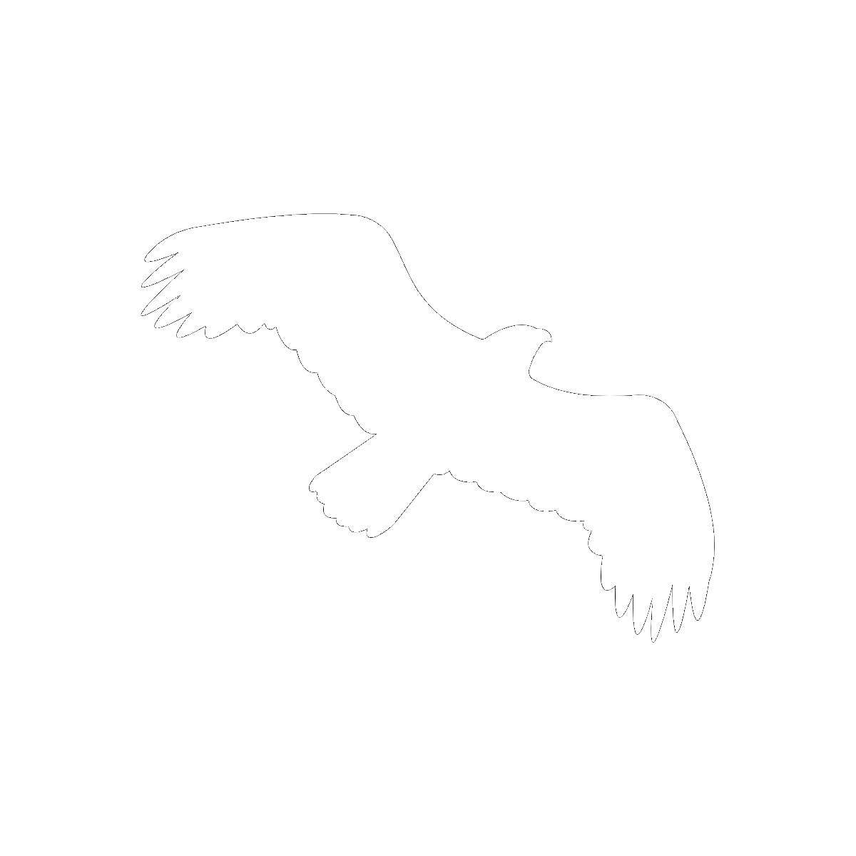 Symbol The Windhover
