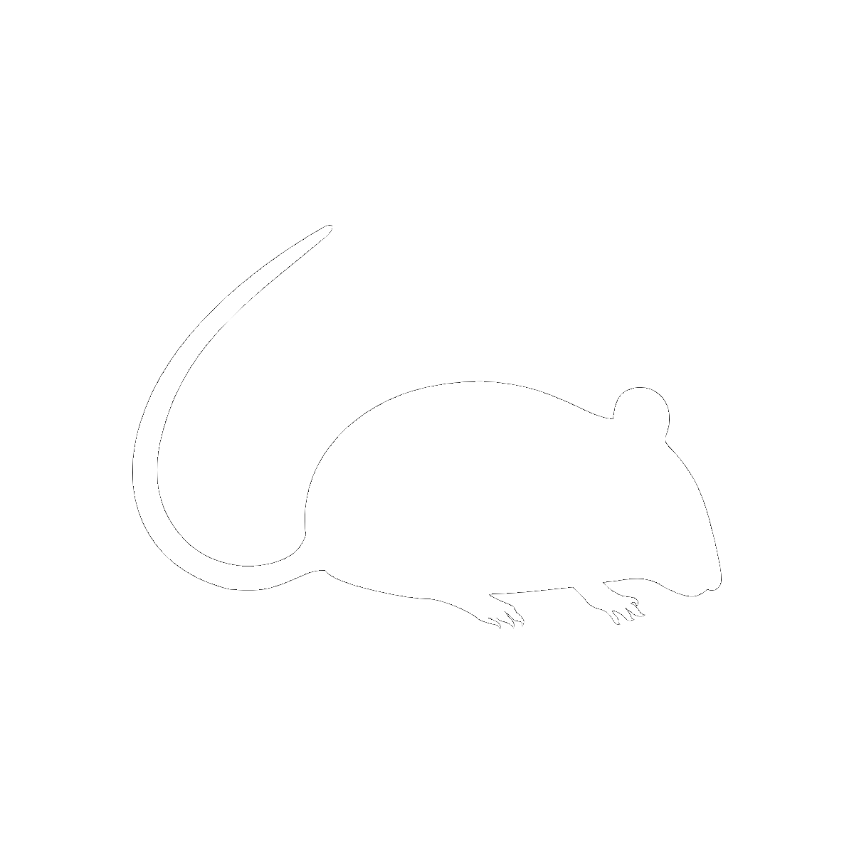 Symbol The Mouse